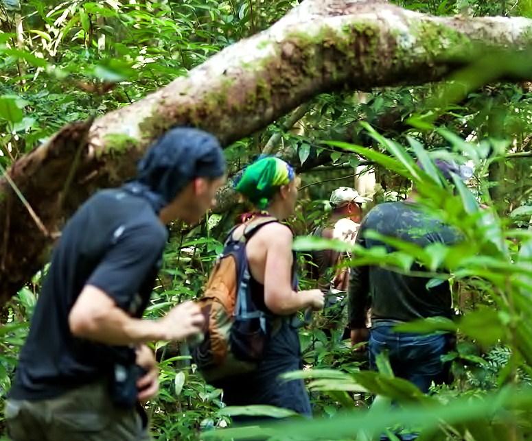 Remote Amazon Tours